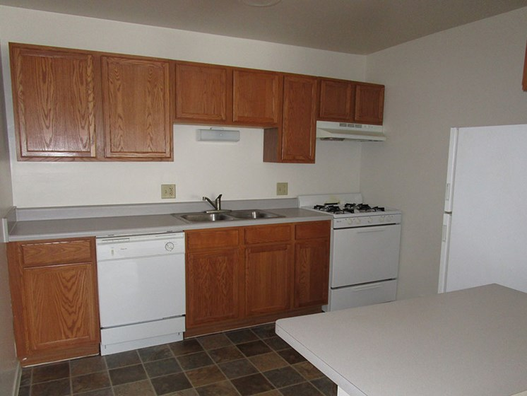 Double Stainless Steel Sink at The Birches Apartments, Illinois
