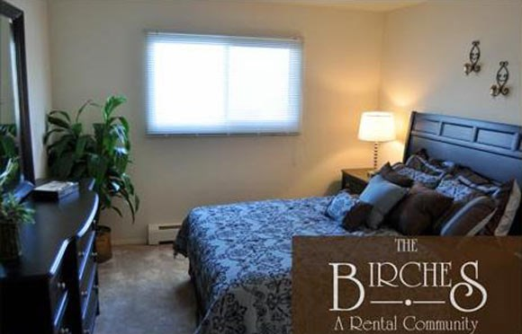 King-Sized Bedrooms at The Birches Apartments, Joliet, IL