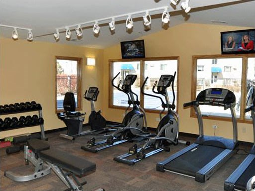 Cardio Equipment at The Birches Apartments, Joliet, IL, 60435