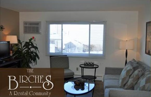 Furnished Corporate Packages Available at The Birches Apartments, Illinois, 60435