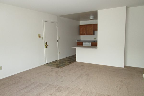 Wall-to-Wall Carpeting at The Birches Apartments, Illinois, 60435