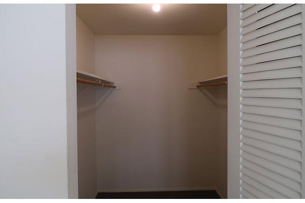 Walk-in Closets at Pine Ridge, Moline, IL, 61265