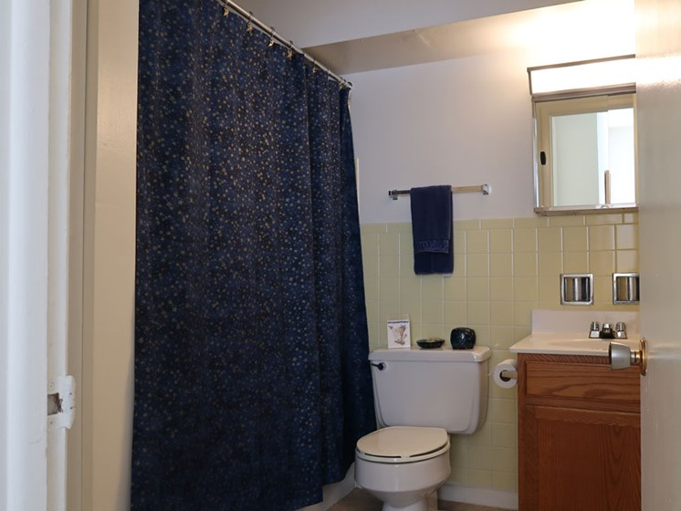 Bathroom at Pine Ridge Apartments in Moline Illinois