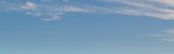 Seattle banner 1