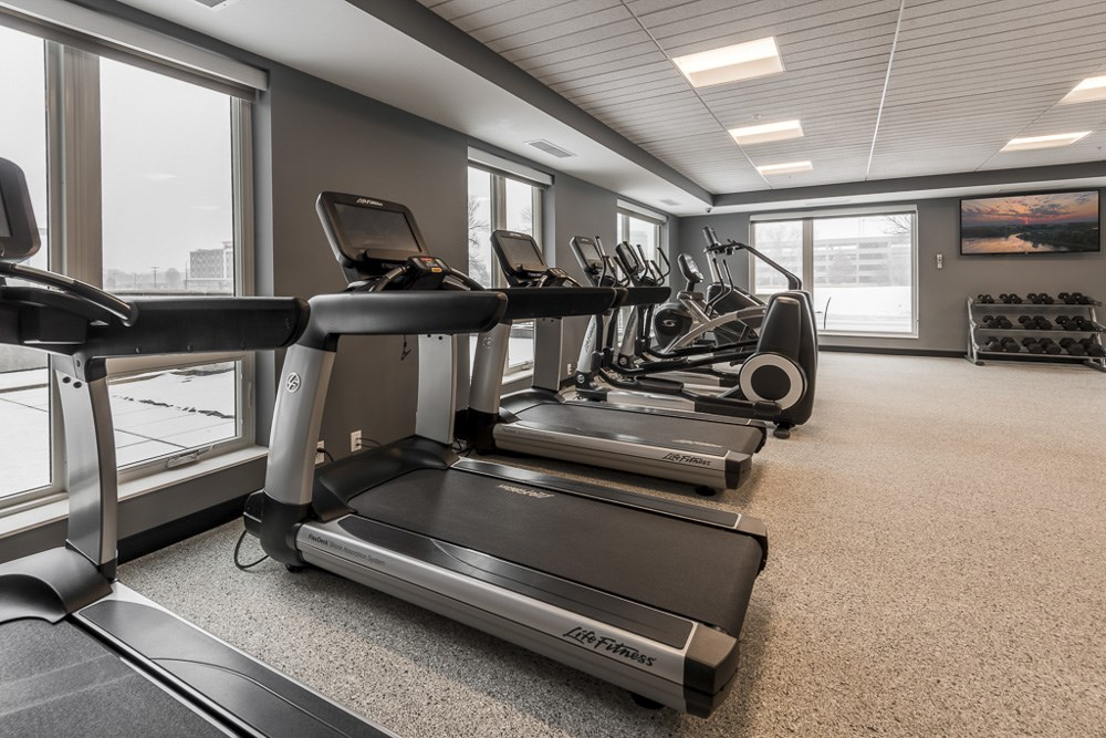 Line of treadmills at The Preserve's expansive fitness center