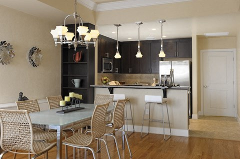 Updated kitchen with stainless steel appliances and kitchen tables in Newberry, FL apartment