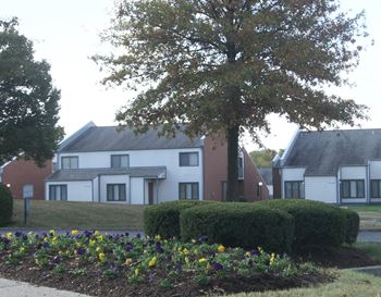 3395 Spangler Dr. 1-2 Beds Apartment for Rent Photo Gallery 1