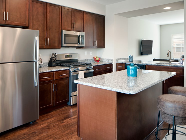 Stainless steel appliances including gas range at Townes at Pine Orchard, Ellicott City