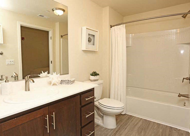 Bathroom l Luxe Ripon Apartments for rent in Ripon CA