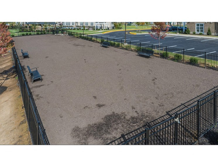 Large Dog Park at Abberly Waterstone Apartment Homes, Virginia