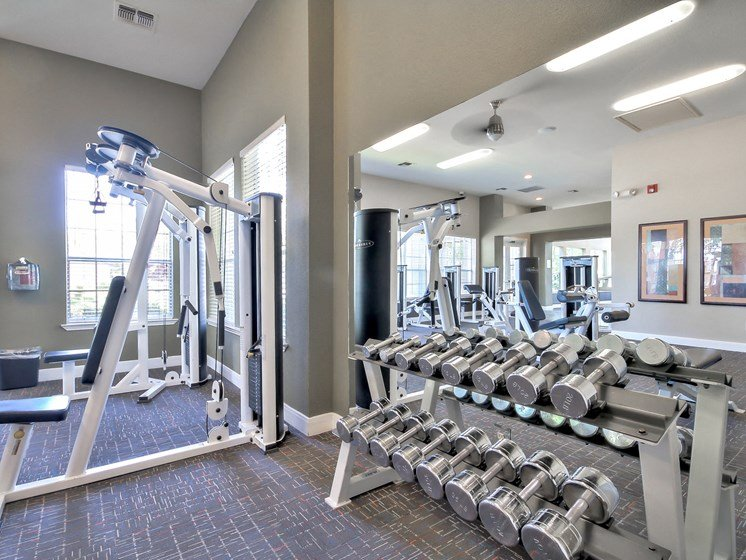 Fully body work out center includes weights, and strength training equipment.
