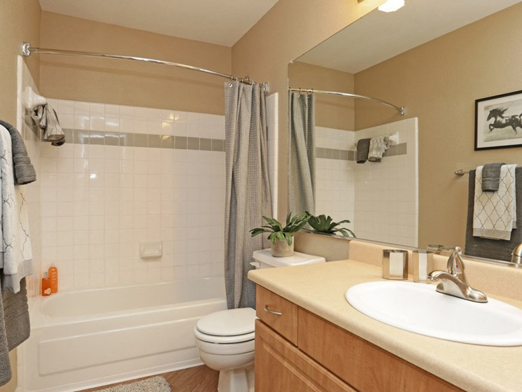 Spacious bathroom with wood style plank flooring, garden style bathtub shower combination