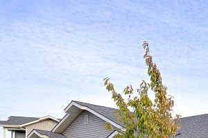 2865 W. Elliott Drive 1-3 Beds Apartment for Rent Photo Gallery 1