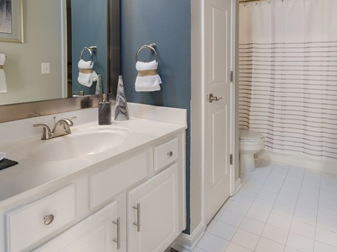 Regatta Bay Bathroom