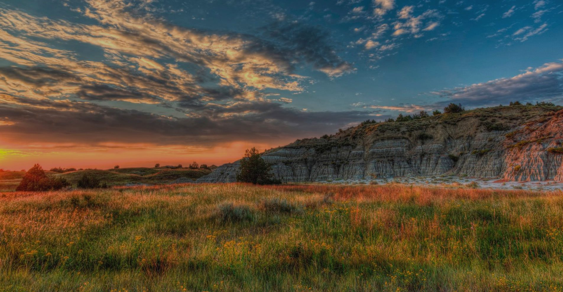 Landscape around Bluffs of Williston Apartments ND