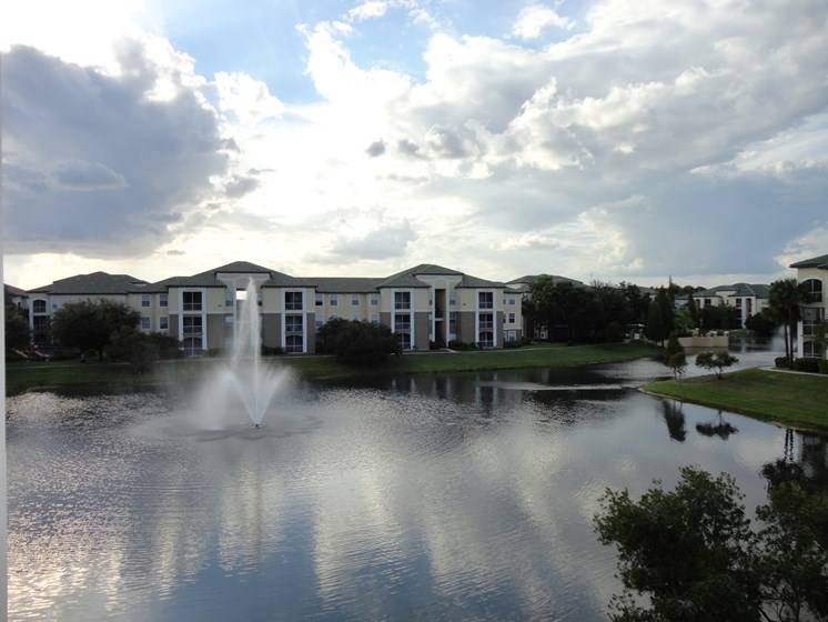 Small Lake on property Allegro Palm Riverview Florida