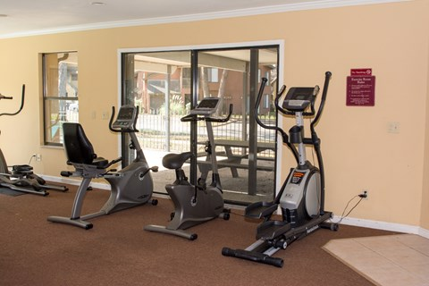 Gym with three Elliptical machines at Bluff House Apartment Homes, Florida, 32073