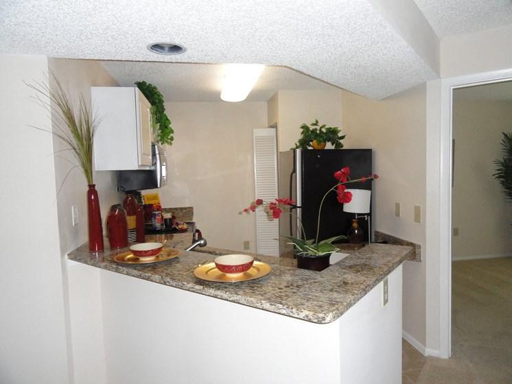 Kitchen Bar Bridgewater St. Petersburg Florida