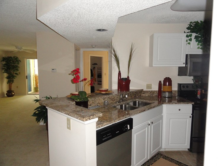 Kitchen with dishwasher Bridgewater St. Petersburg Florida