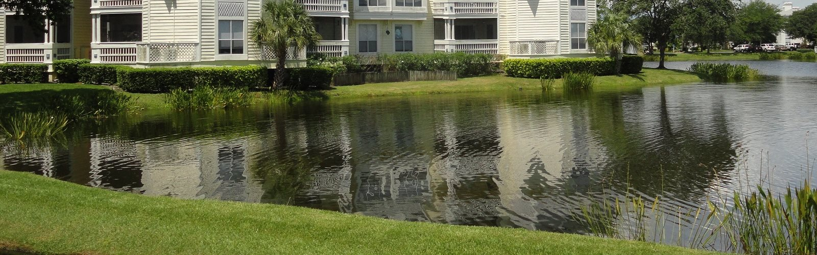 Small Lake on Site Bridgewater St. Petersburg Florida