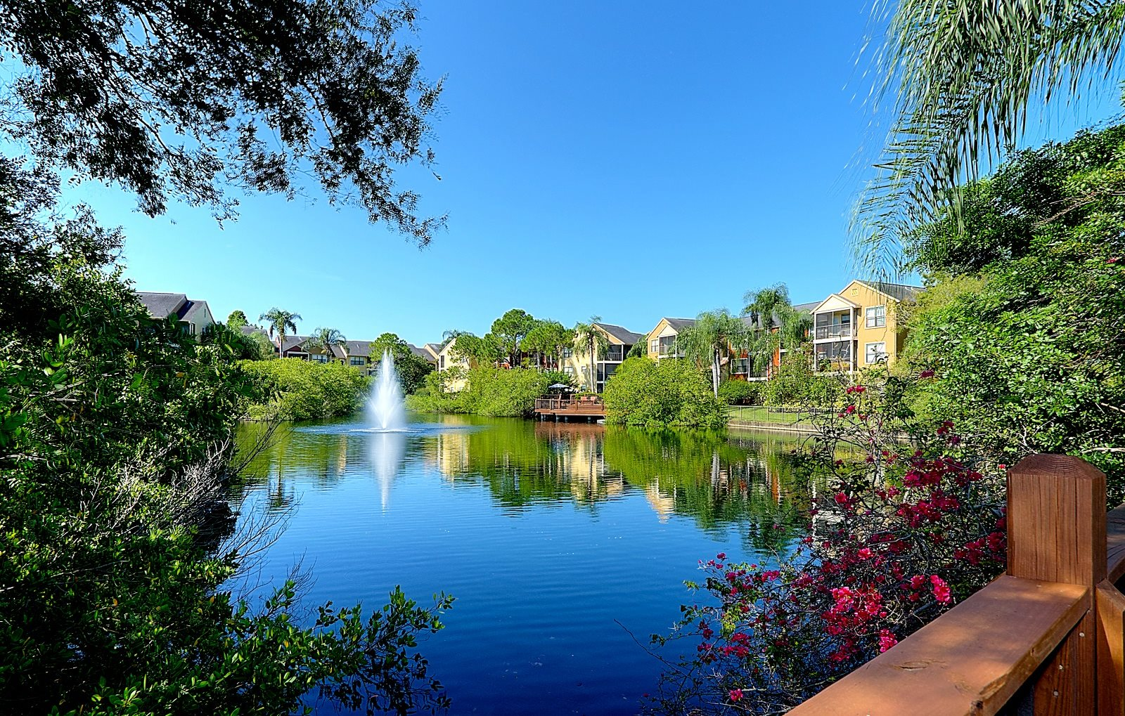 Pond on property Mandalay on 4th St. Petersburg Florida