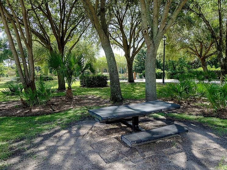 Bench Tree Rest Area Orlando Florida