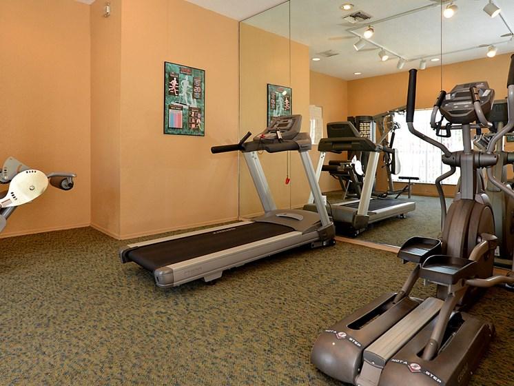 Interior Fitness Center Mirror Orlando Florida
