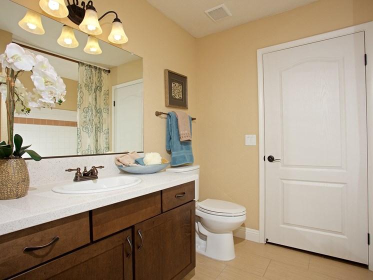 Interior Unit  Bathroom  Las Vegas Henderson Nevada