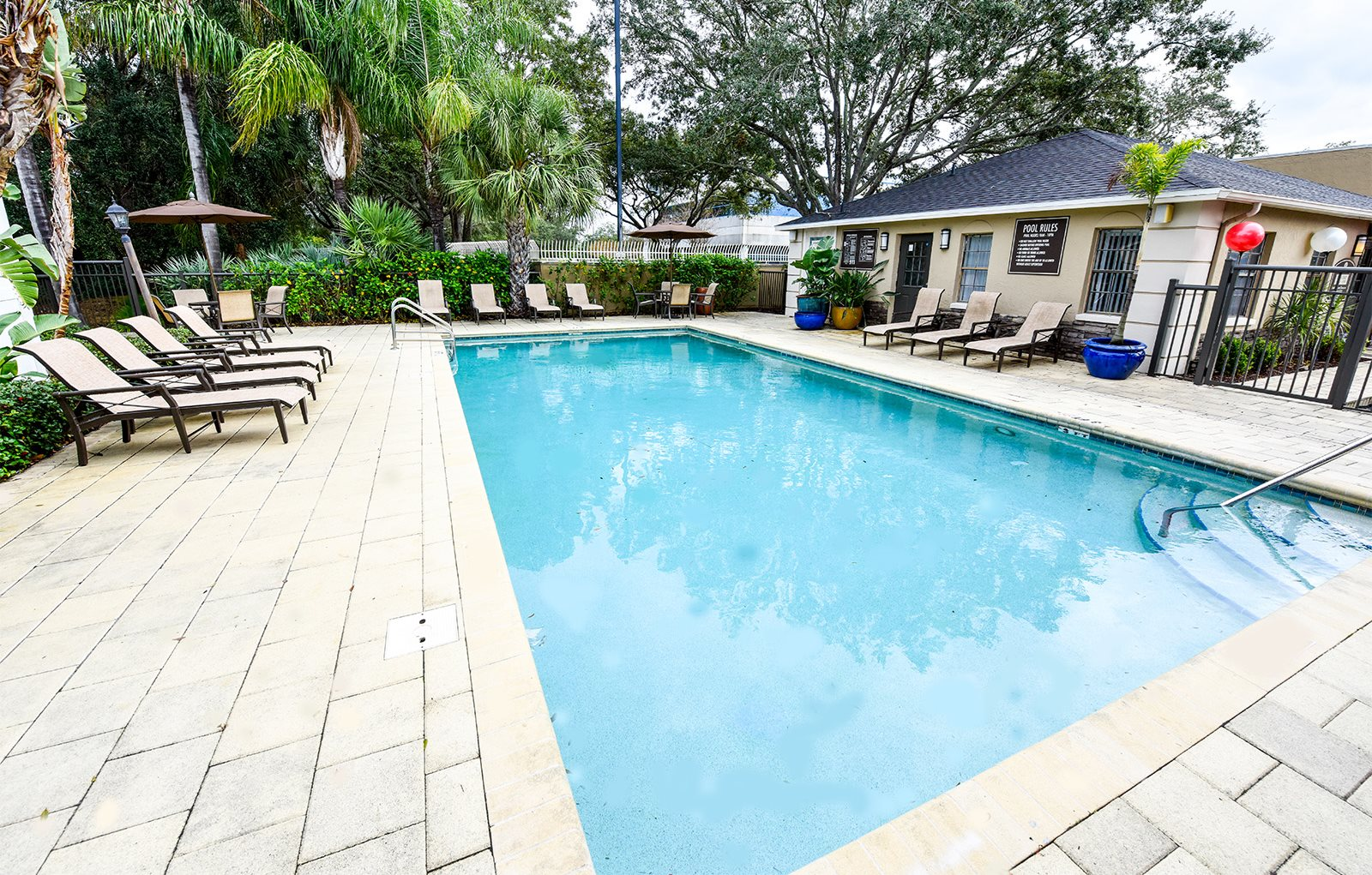 Pool Area Westminster Tampa Florida