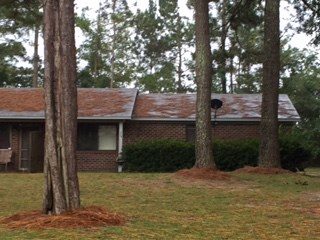 114 Long Ridge Drive 2 Beds House for Rent Photo Gallery 1