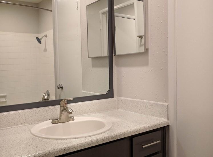 Chestnut Park Apartments - bathroom