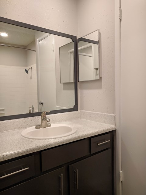 Chestnut Park Apartments - bathroom