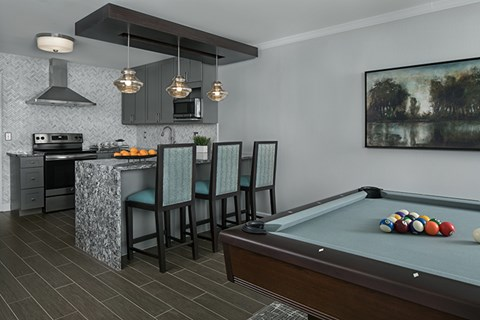Exciting Pool Table with Bar Kitchen Area
