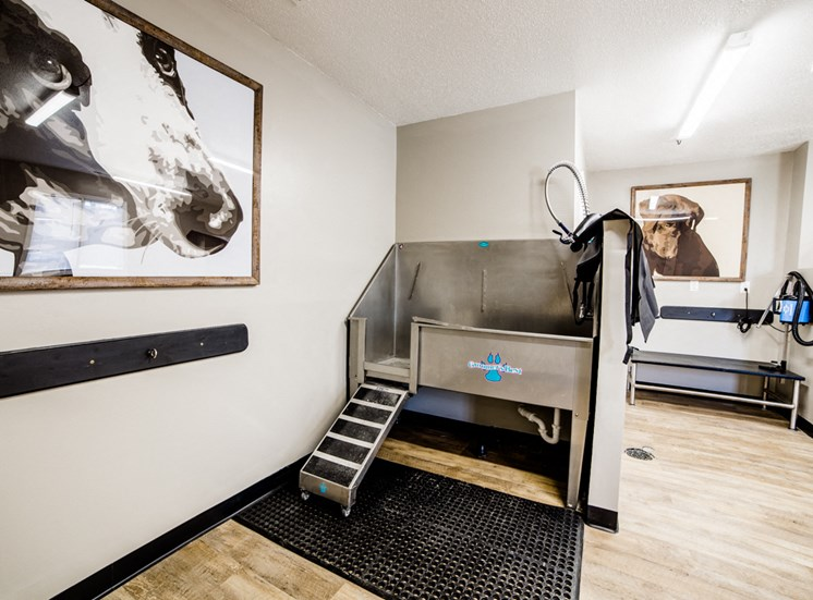 Noblesville Apartments with Dog Wash Stations- Northlake Village Apartments