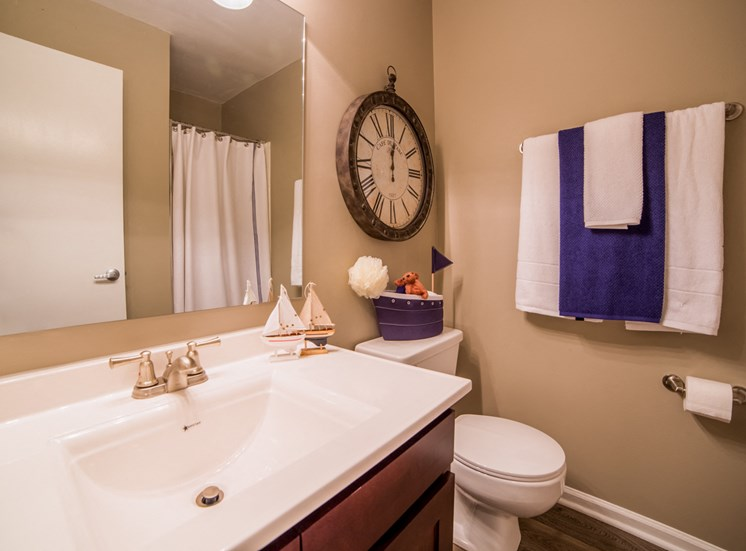 Guest Bathroom in 2B-2BR Apartment at Northlake Village