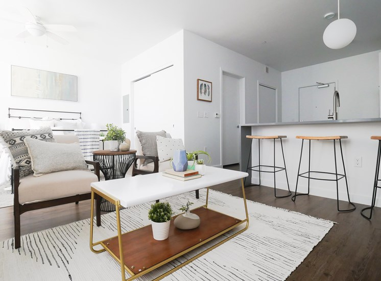 Studio Apartment  at The Fowler, Boise, Idaho