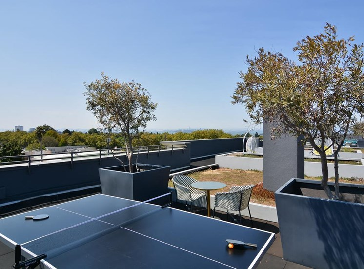Rooftop Ping Pong Table
