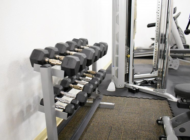 Fitness Center at 1122U Apartments for Rent in Berkeley, CA, 94702