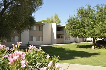 1030 S Dobson Studio Apartment for Rent Photo Gallery 1