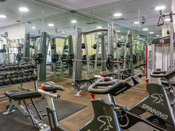 Free Weights And Cardio Equipment at The Adelaide, Florida