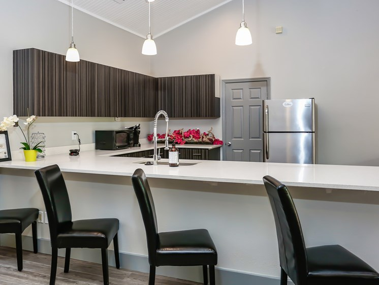 Resident Lounge With Demonstration Cooking Kitchen at The Adelaide, Orlando, FL