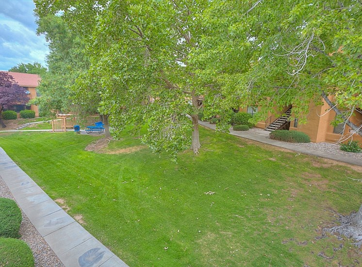 Beautiful Surroundings With Walking Trails at The Overlook Apartments, Albuquerque, New Mexico