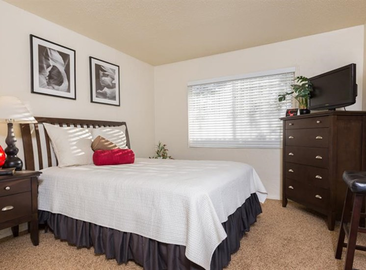 Cozy Bedrooms With Over sized Windows at The Towers Apartments, Albuquerque, NM