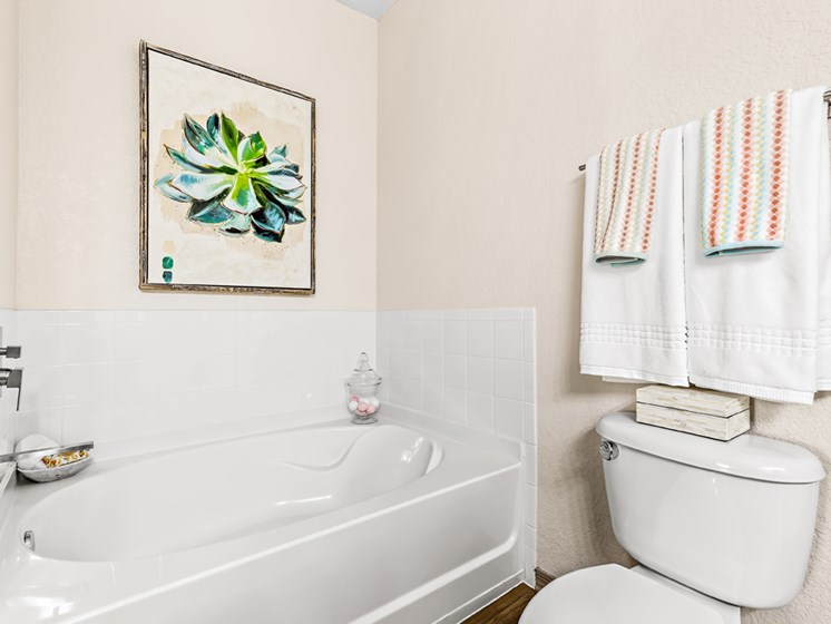Large Sized Garden Tub In Bathroom at Savannah at Park Central, Florida
