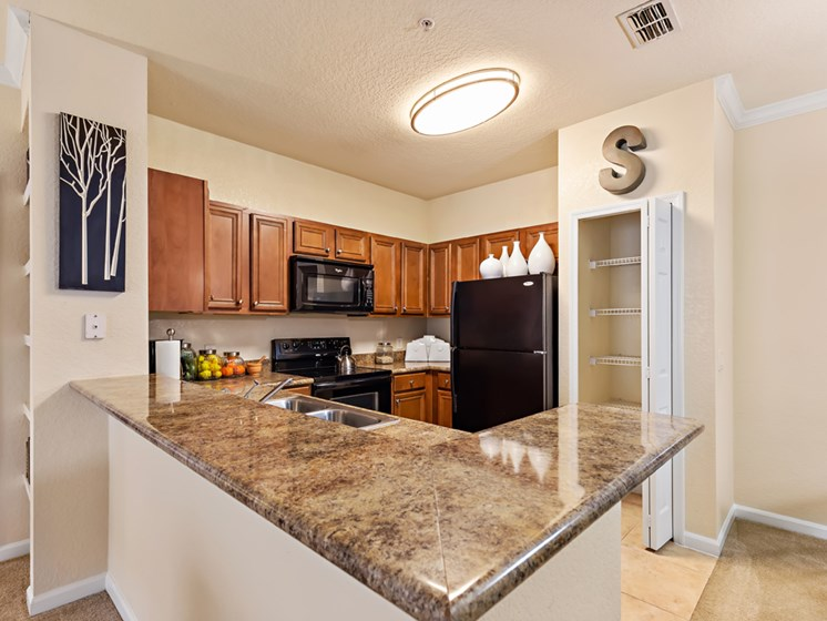 Kitchens With High-Quality Quartz Countertops at Savannah at Park Central, Orlando, FL, 32839