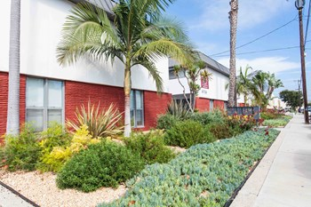 6754-6764 Abrego Rd 1 Bed Apartment for Rent Photo Gallery 1