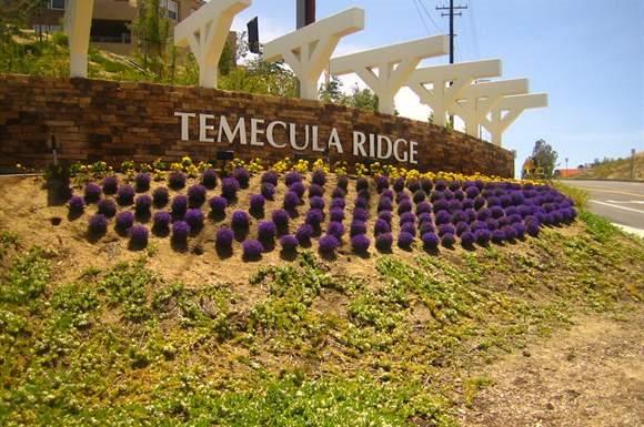 Temecula homepagegallery 1