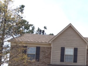 6435 E Forked River Cove 5 Beds House for Rent Photo Gallery 1