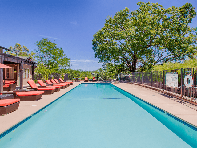 Resort-Style Zero-Entry Pool at Crooked Oak at Loma Verde Preserve, 130 Cielo Lane