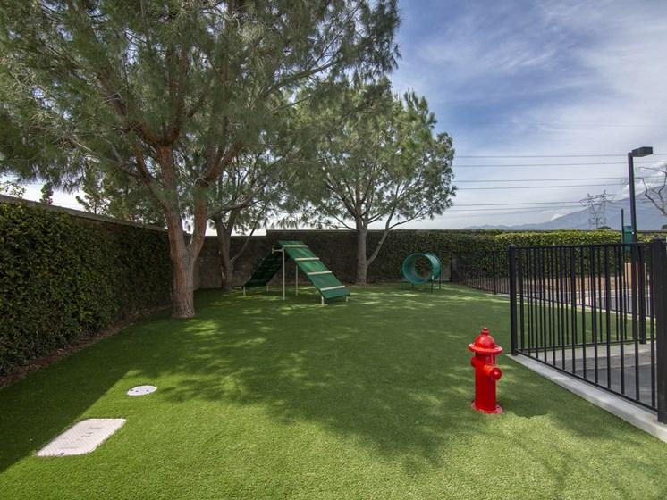 Pet Friendly Apartments in Rancho Cucamonga CA-Victoria Arbors Apartments Dog Park